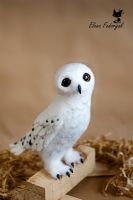 snowy owl by KittenBlackUA