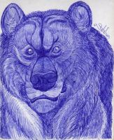 Last from 2013 - Bear doodle by Lorfis-Aniu