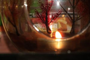 Candle Light by hkane5