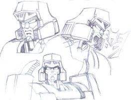 Megatron heads by Whelljeck