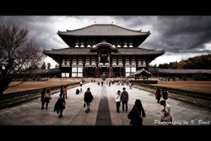 Todaij-ji Temple by Solarstones