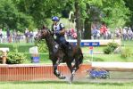 3DE Water Jump Series Bay Horse Pt 6 by LuDa-Stock