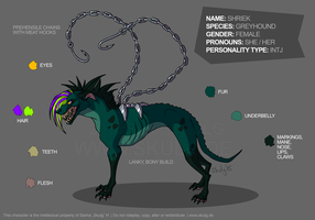 Reference Sheet: Shriek by bestiaexmachina