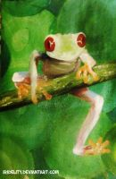 Tree Frog by Rokeii