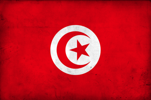 Grunge Flag of Tunisia by pnkrckr