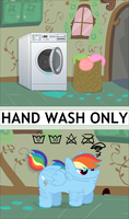 Hand Wash Only by UltraTheHedgetoaster