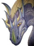Dragon smirk by ElenPanter