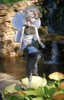 There are faires at faire by amime
