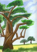 African Trees by faryewing