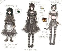 OC Chara Sheet by evanescent-adoration