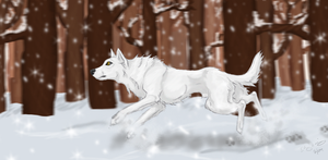 Flakes of frost by Feralhound07