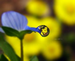 one unit droplet by sinanTR