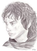 Just another Frodo by AgiVega