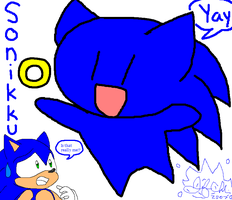 What the..:Sonic: by Jen-C