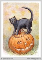 ACEO: Lantern Cat by emla