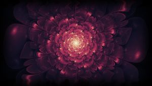 Fractal flower by Perbear42