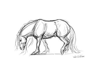 sketch-horse by whitecrow-soul