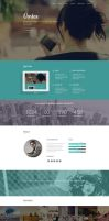 Vortex - One Page Parallax Flat WordPress Theme by DarkStaLkeRR