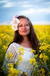 In the rapeseed field (7) by Avahlon-Stock
