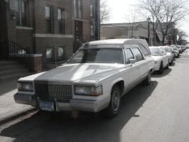 Hearse Limo by LittleBigDave