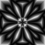 Bold Flower In Black And White by rayna23