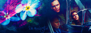 Tom Hiddleston Facebook Cover by onedirectionelif