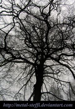 The Tree of Life by metal-steffi