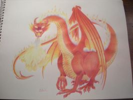 Fire Dragon by The-EvIl-Plankton