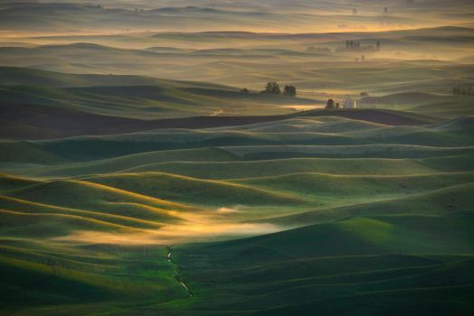 Pattern of Farmland by porbital