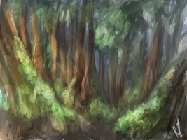 Forest by RelicTea