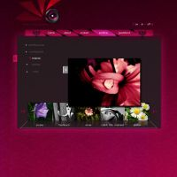 radkov photography-web design by pacholight