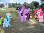 Day At The Park by Eli-J-Brony