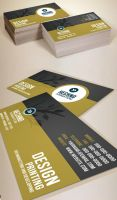Animation Business Card by xnOrpix