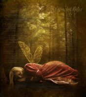 Fairy dream... by moonchild-ljilja