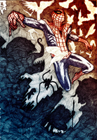 Coloring - Spider-Man: At Dusk by pjb47 by DavidFCG