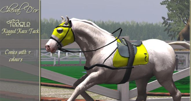 Teegle Rigged Race Tack. by ChevalDor