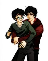 HP: Tom and Harry by loonylucifer