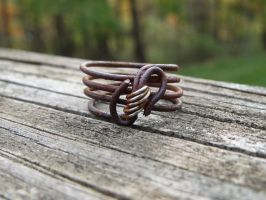 Rustic Iron Ring by whippetgirl