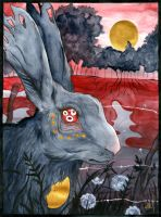 Watership Down by TrollcreaK