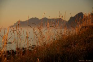 Lofoten sunset by Piasecka