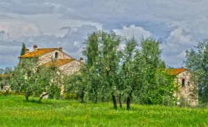 Near Florence by seianti