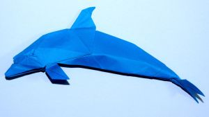 bottlenose dolphin by palaeorigamipete