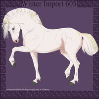 Winter Import 605 by ThatDenver