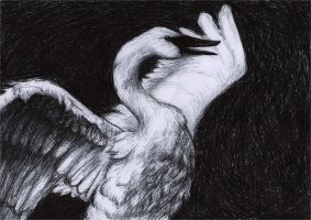 Swan song by CeciliaGf