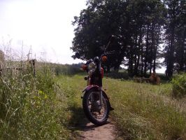 Simson s51 c by Ardgy