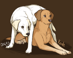 SR: Jacey and Koda by CatLuvsCookies