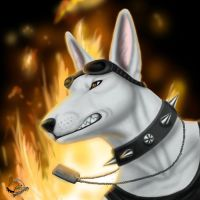 Burning fire by BullTerrierKa