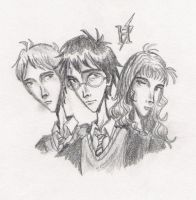 Harry Potter and the Trio by laney64