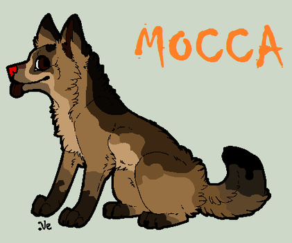 Mocca-Profile by TheSheeranKennel