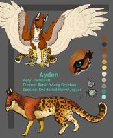 Ayden- Windsonde or 2011 ref by Aydengryphongirl